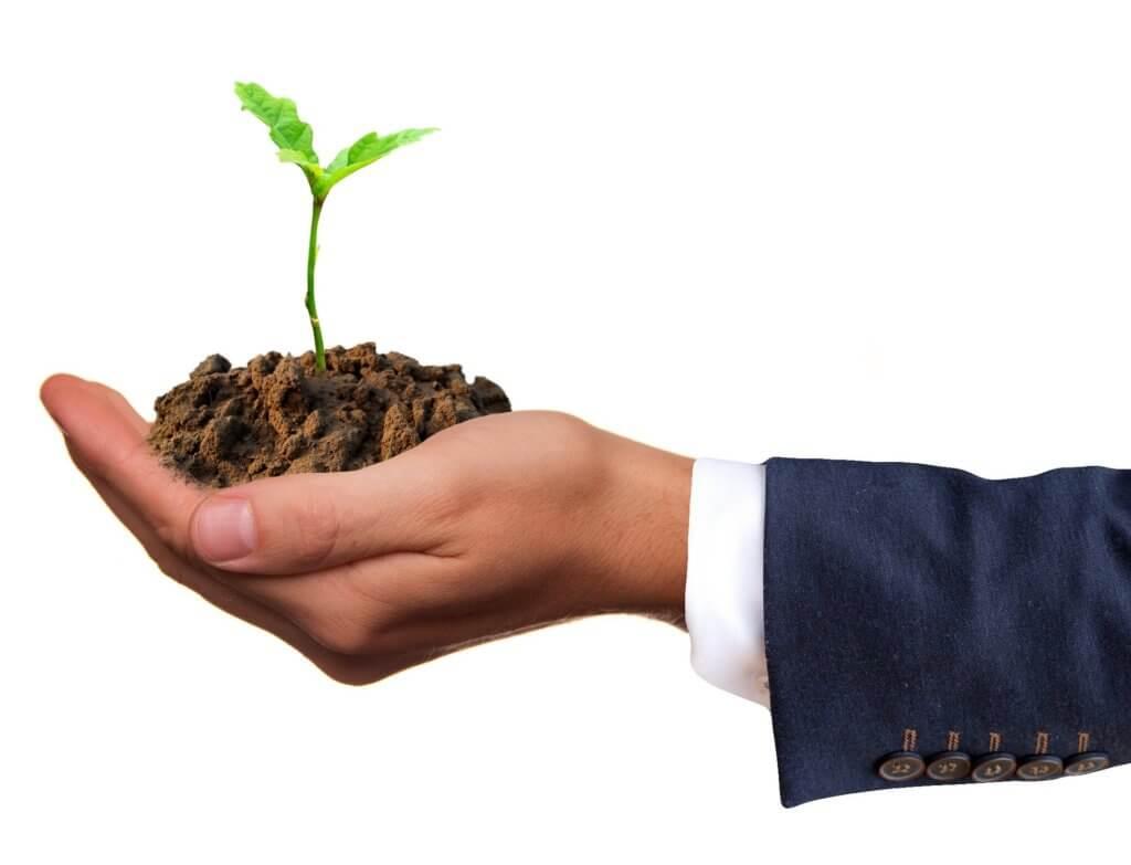 Como Conseguir o seu Primeiro Cliente de Consultoria - plantar para depois colher